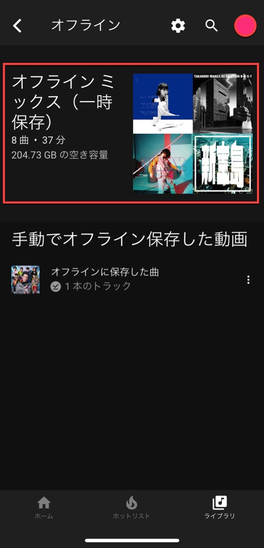 Youtube music offline 3